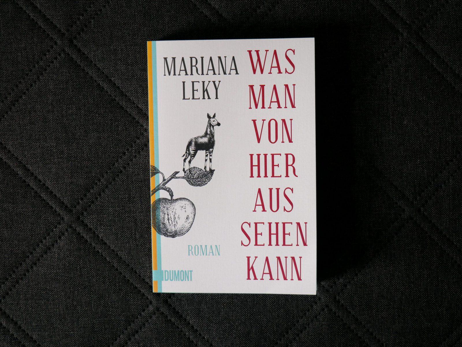 Was man von hier aus sehen kann von Mariana Leky - Buch
